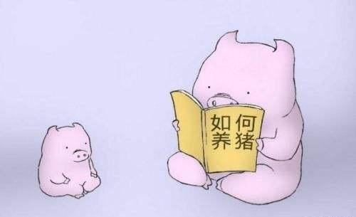 招养猪的,学历得是清华北大人大...-牛吧云播